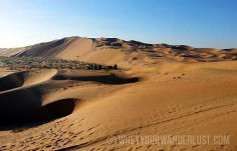 Splurge Desert